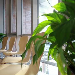 Wartezimmer - Zentrum für Hand- und Fußchirurgie Hannover-Döhren
